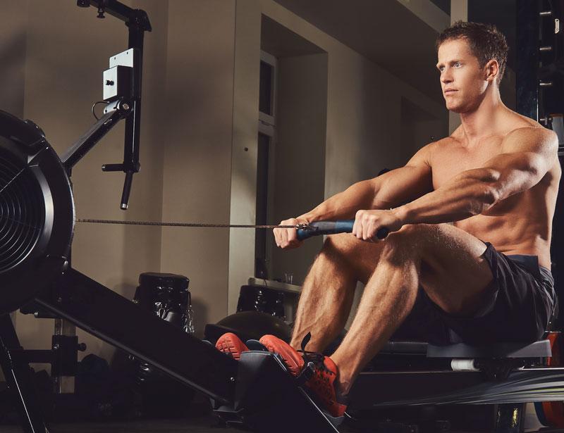 Muscoli interessati con l'allenamento al vogatore